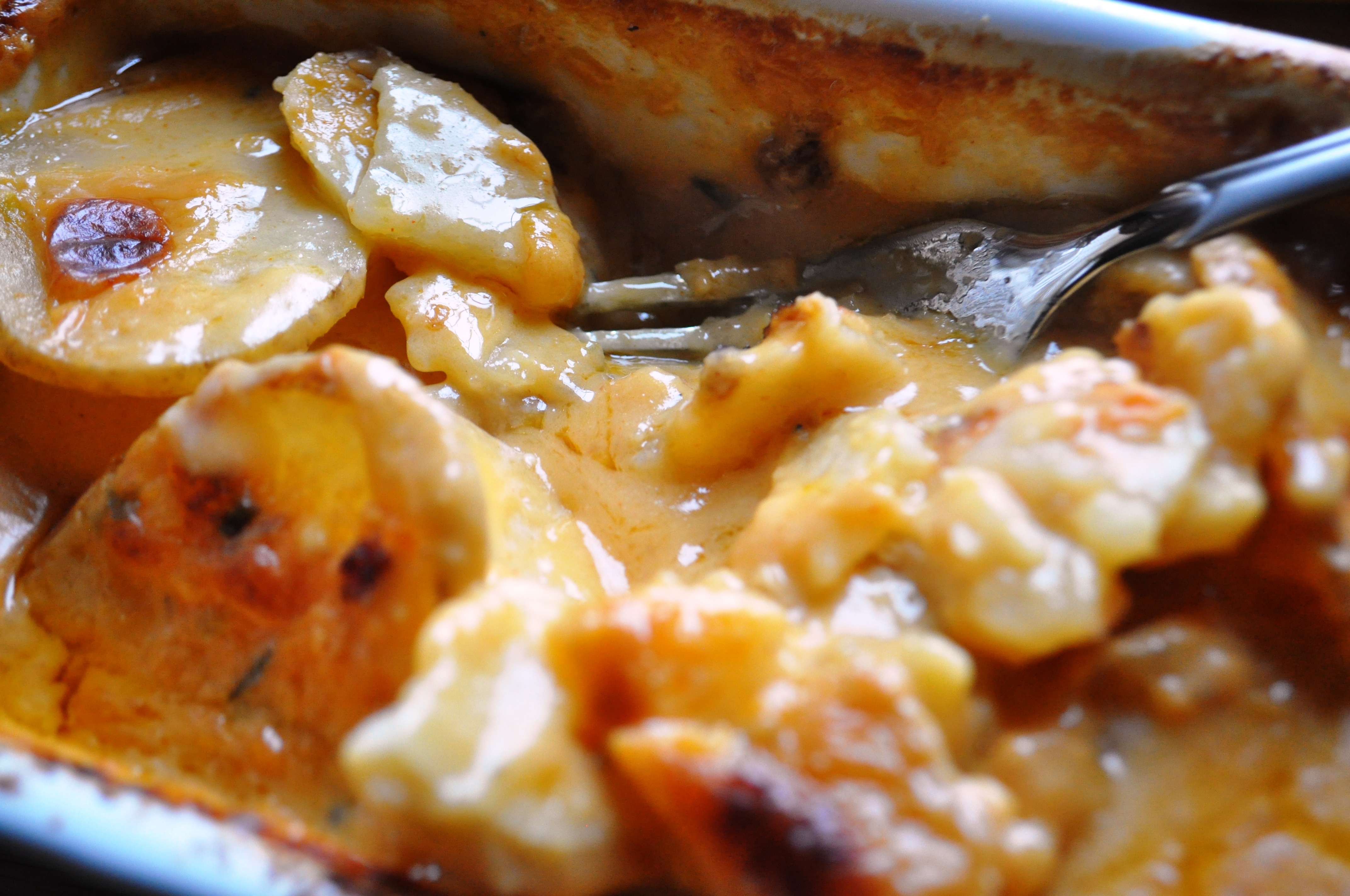 Dairy Free Scalloped Potatoes | gluten free zen