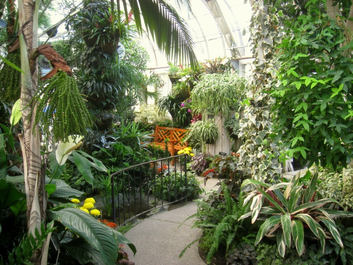 Gaiser_Conservatory_(Manito_Park)_-_IMG_6982