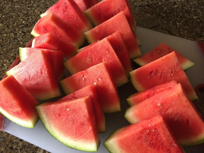 And my all time favorite, watermelon slices. So good with a sprinkle of sea salt.