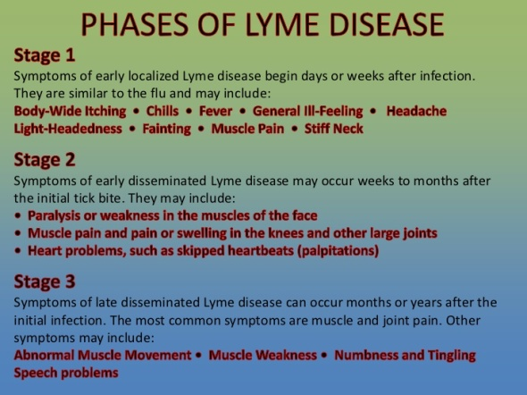 sami-yasin-md-lyme-disease-primer-4-728